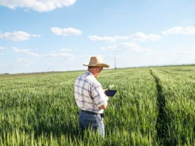[Tecnologia para impulsionar o agronegócio no Brasil]