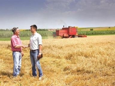 [A importância do T&D no setor de Agronegócio]