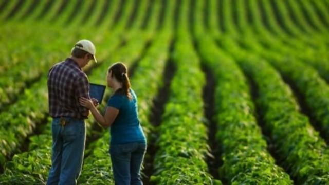 Conheça as mudanças na cultura organizacional no agronegócio
