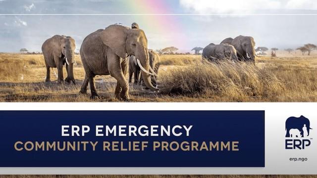 O Group Elephant junto ao ERP e a EPI-USE estão indo Além do Propósito Corporativo em uma ação para o Covid-19