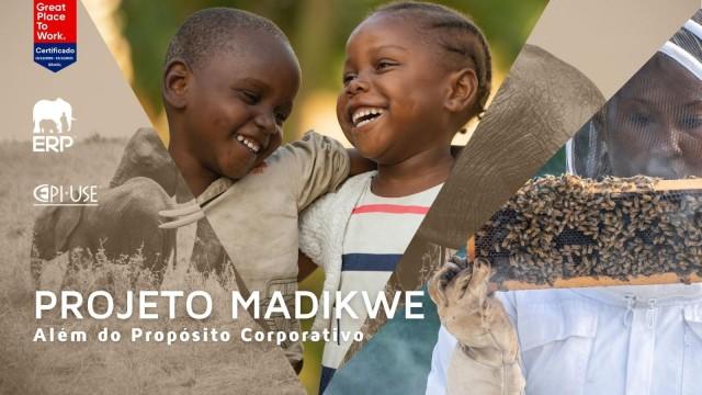 ERP Implementa Colmeia no Projeto Madikwe