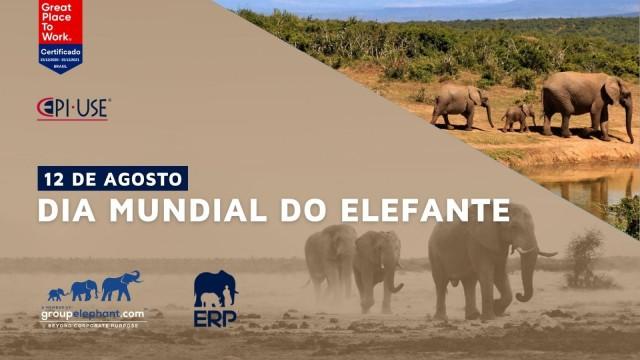 A EPI-USE celebra o Dia Mundial do Elefante