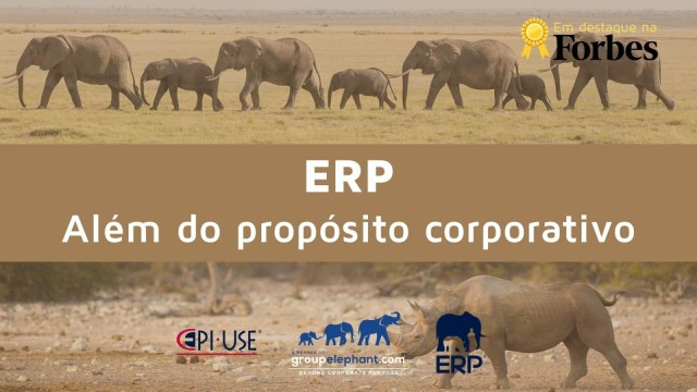 ERP exemplo de Human Centered Design (HCD)